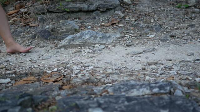 vídeos de stock, filmes e b-roll de caminhando na floresta - ponto de vista de câmera