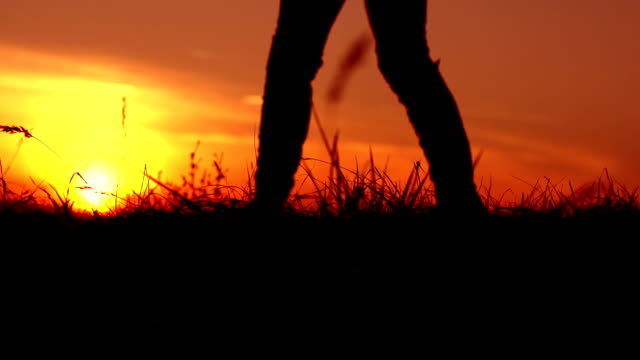 hd super slow-mo: walking in the grass at sunset - solitude stock videos & royalty-free footage
