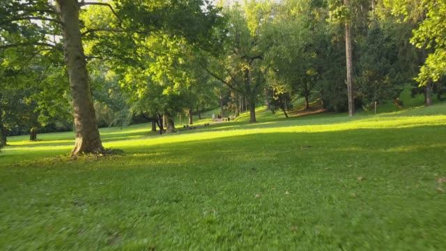 vidéos et rushes de marcher dans le parc - pelouse