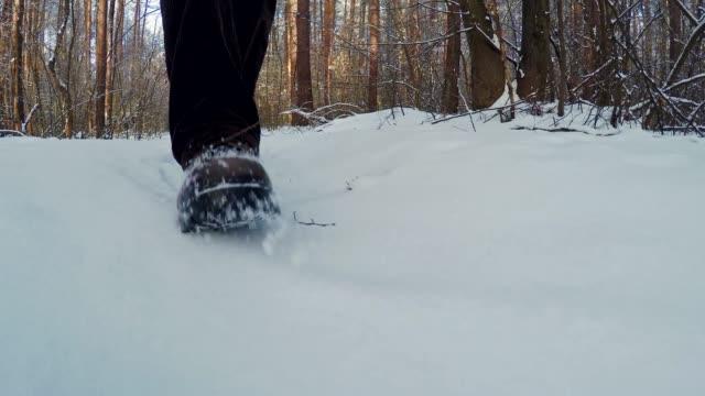 vidéos et rushes de marcher dans la forêt de l'hiver. - neige fraîche