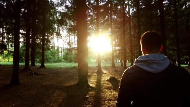 Caminando en el bosque hacia el sol