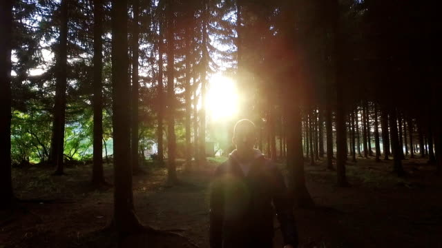 walking in the woods towards sun - spirituality stock videos & royalty-free footage