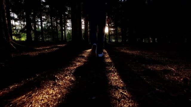 Walking in the woods towards Sun