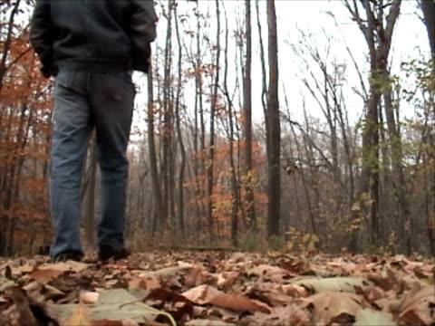Walking in the Woods (NTSC)