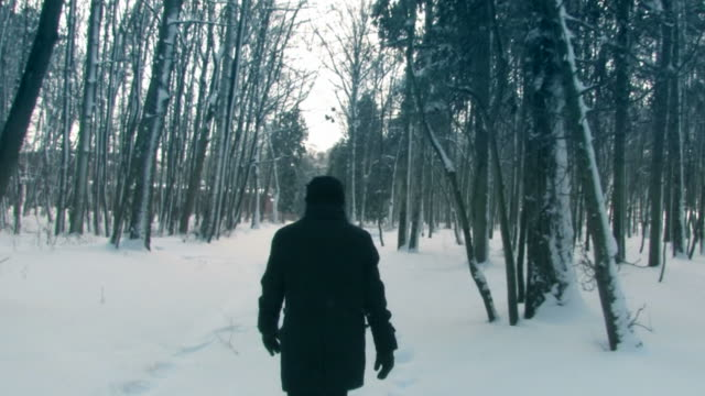 vidéos et rushes de marcher dans les bois d'hiver - trébucher