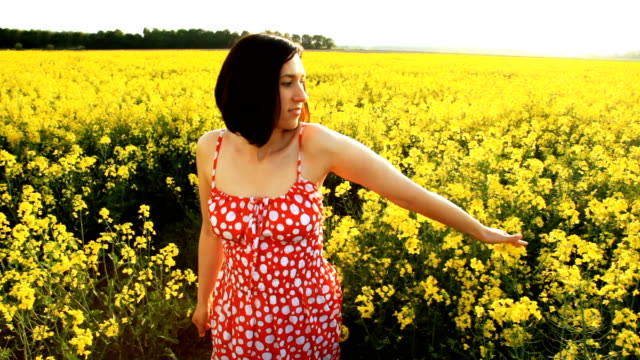walking in the yellow field - crucifers stock videos & royalty-free footage
