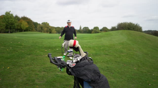 walking off the green to the bag of clubs. - golf bag stock videos & royalty-free footage