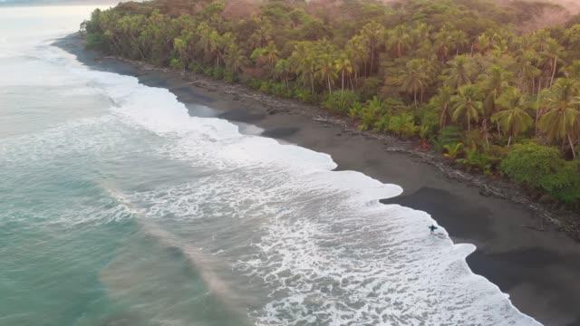 vidéos et rushes de marcher sur une plage tropicale - océan pacifique