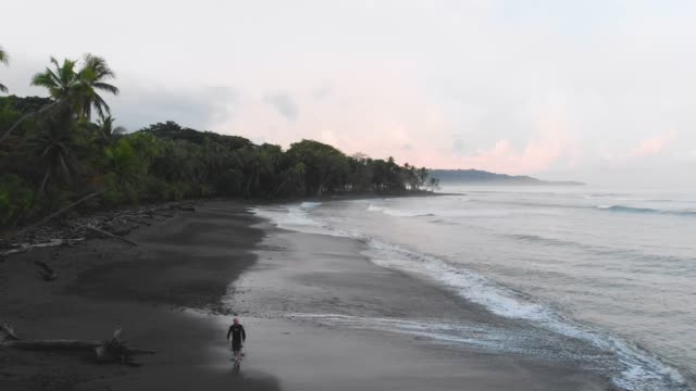 walking on a tropical beach - costa rica stock videos & royalty-free footage