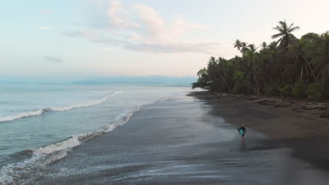 walking on a tropical beach - costa rica video stock e b–roll
