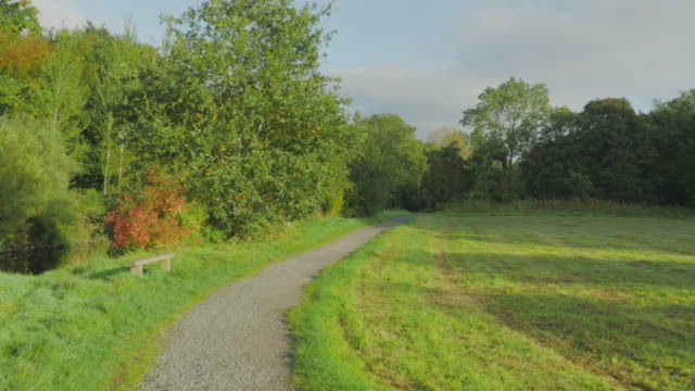 walking on autumn countryside morning ,northern ireland - public park stock videos & royalty-free footage