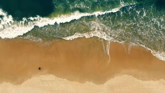 walking on beach in brazil cinemagraph - frozen stock videos & royalty-free footage