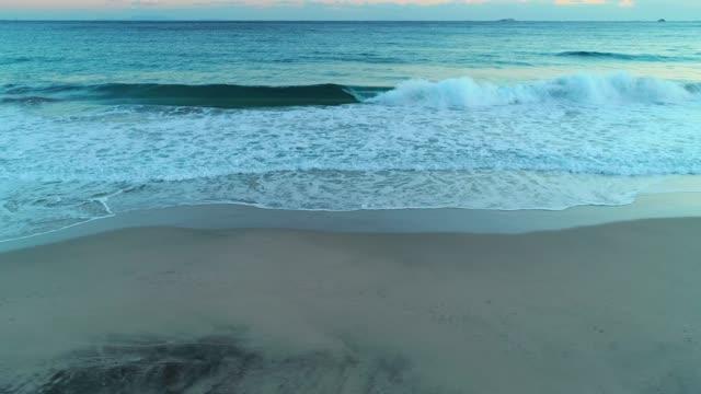 promenader på stranden - plusphoto bildbanksvideor och videomaterial från bakom kulisserna