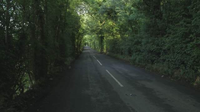 walking on countryside road morning ,northern ireland - northern ireland stock videos & royalty-free footage