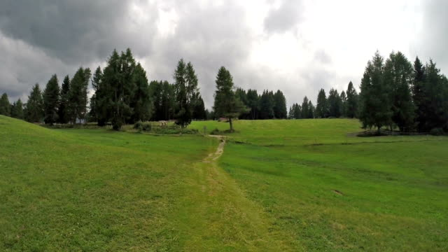 walking on dolomites (seiser alm - italy) - langkofel stock videos & royalty-free footage