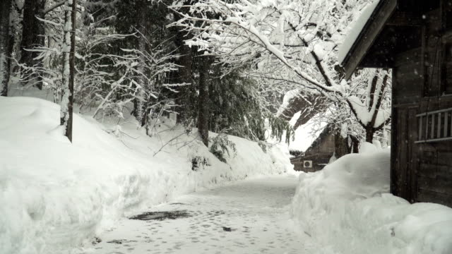 walking on street to see rural scene at shirakawago village covered by snow - panning stock videos & royalty-free footage