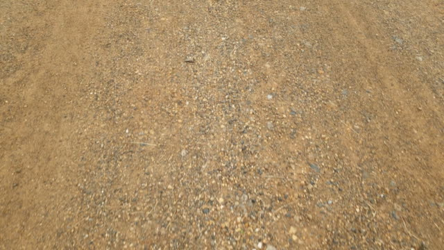 pov walking on surface dirt road in national park. - walk of fame stock videos & royalty-free footage