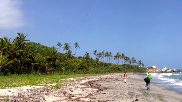 hd: walking on the beach - tayrona national park stock videos and b-roll footage