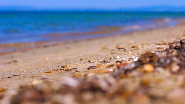 walking on the beach - extreme close up stock videos & royalty-free footage