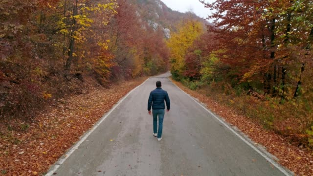 林道を歩いてください。 - 荒野点の映像素材/bロール