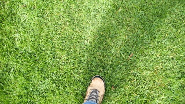 walking on the lawn