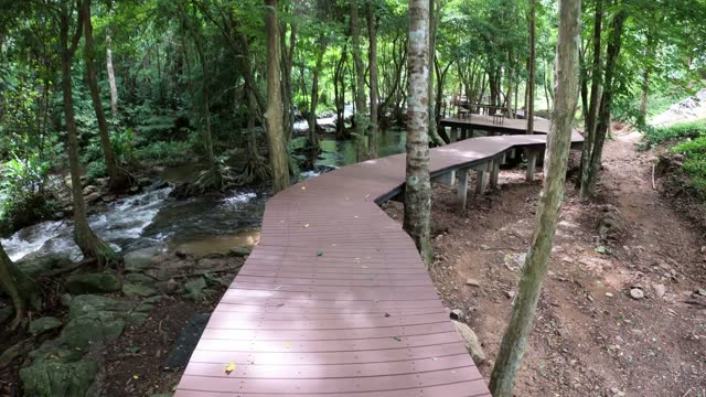 walking on wooden bridge over a river in the forest - boardwalk stock videos & royalty-free footage