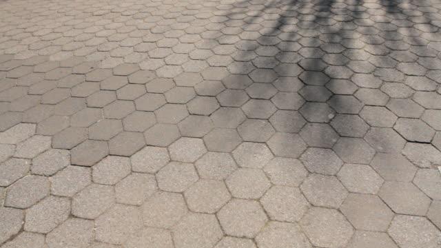 vídeos y material grabado en eventos de stock de walking path, people pass by time lapse - miembro humano