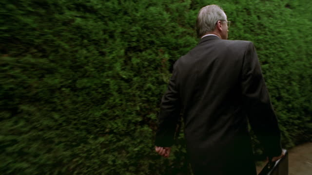 rear view walking point of view businessman walking in hedge maze looking around for exit / spain - maze stock videos & royalty-free footage