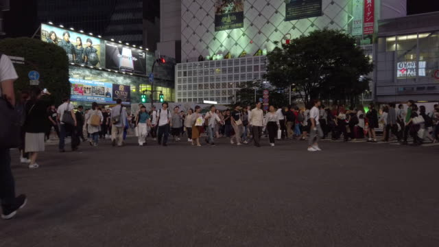 4k walking point of view of people walking through the shibuya crossing at night in tokyo , japan - punto di vista di un passante video stock e b–roll