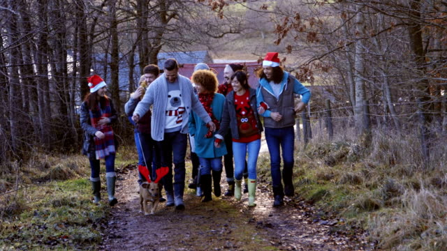 walking the dog on christmas day - tinsel stock videos & royalty-free footage