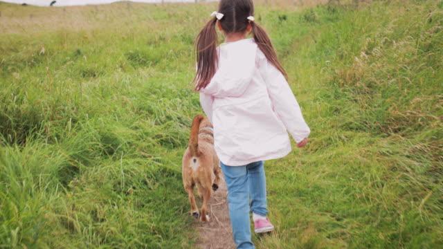 Spaziergänge mit dem Hund