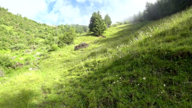 """pov: walking the """"stubaier höhenweg"""" - walking point of view stock videos & royalty-free footage"""