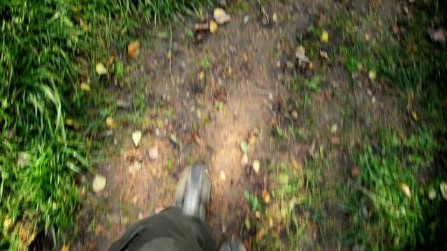 walking through grass - grass stock videos & royalty-free footage