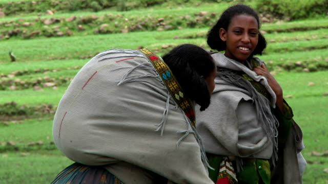 walking through green landscape afar women carrying loads on their backs on august 13, 2011 in afar village in danakil depressi, ethiopia - ethiopia stock videos & royalty-free footage