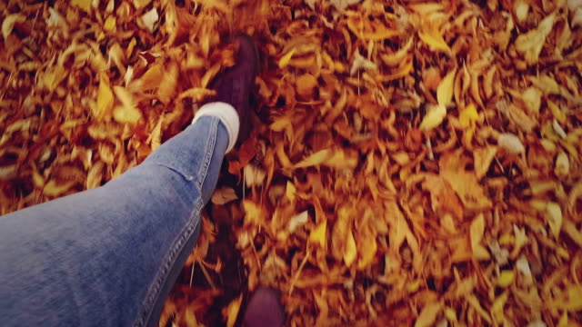 walking through leaves. slow motion - females stock videos & royalty-free footage