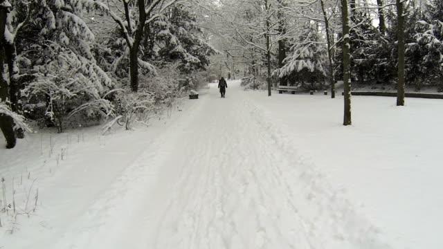 """vídeos de stock, filmes e b-roll de caminhada pela neve park """"pov - ponto de vista de câmera"""