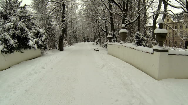 walking through snowy park pov - regensburg stock videos & royalty-free footage