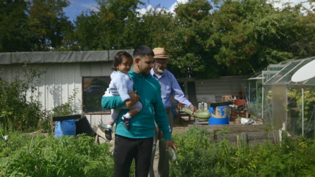 walking through the allotment - community garden stock videos & royalty-free footage
