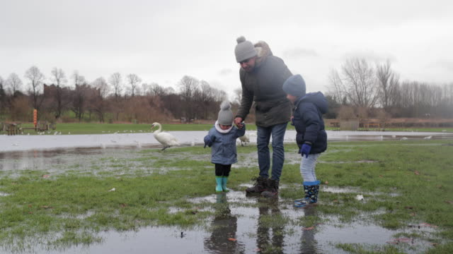 walking through the puddles - family with two children stock videos & royalty-free footage