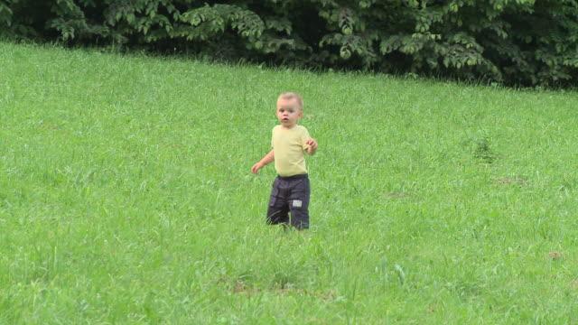 vídeos de stock e filmes b-roll de carrinho de hd: andar criança pequena - só um bebé menino