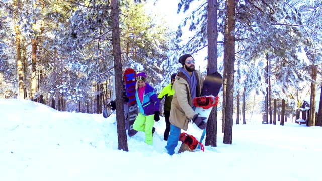 walking trough the forest and snow - abiti pesanti video stock e b–roll