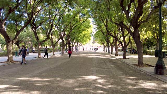 stockvideo's en b-roll-footage met walking under the trees in the national garden in athens, greece - boulevard