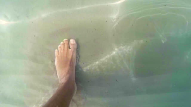 walking underwater - pjphoto69 stock videos & royalty-free footage