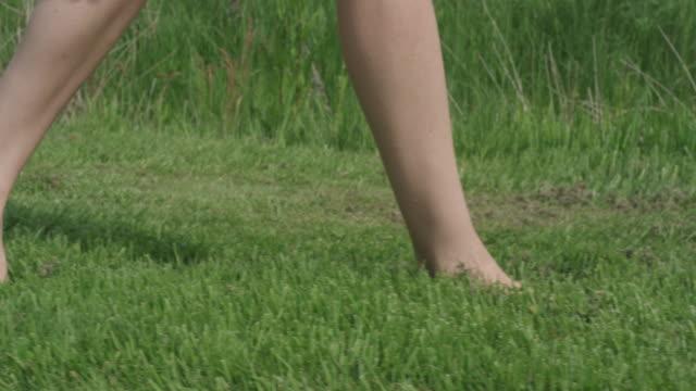 vidéos et rushes de walking - herbe