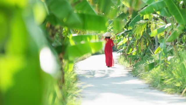 walking vietnamese female through banana plantation foliage vietnam - 赤のドレス点の映像素材/bロール