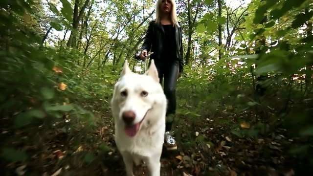 walking with a dog