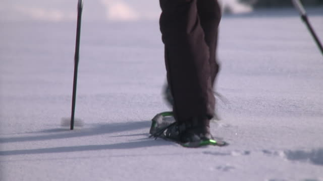 Walking with Snowshoes