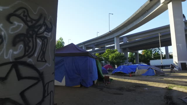 walkthrough tents under highway - homelessness stock videos & royalty-free footage