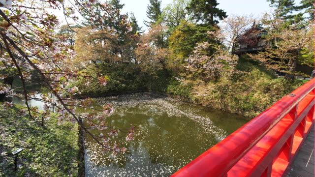 walkway bridge overlooks stream in hirosaki, japan - aomori prefecture stock videos & royalty-free footage