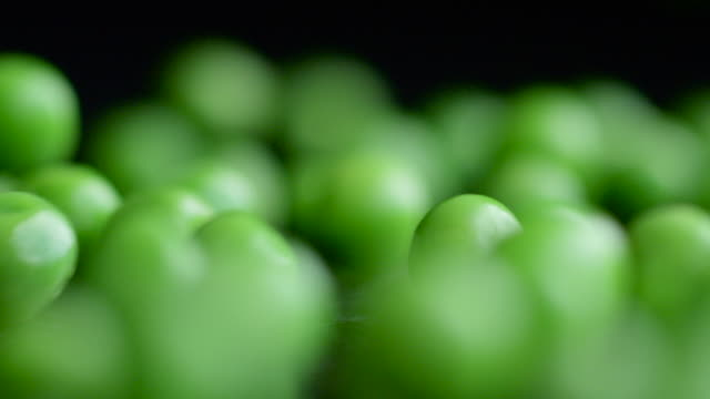 Wall of Green Peas Drop, Bounce & Roll